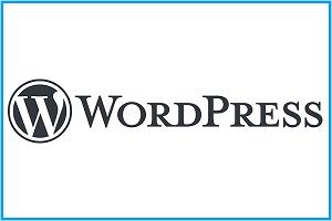 WordPress- logo image